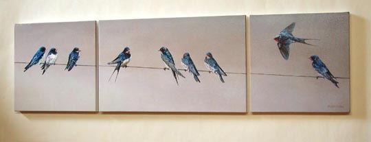 Swallows print - Swallows collecting on a wire canvas print picture