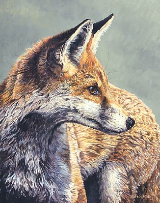 Wildlife art by artist ivan for Art print for sale
