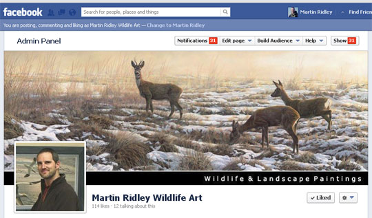 Facebook Martin Ridley Wildlife Art - Business Page