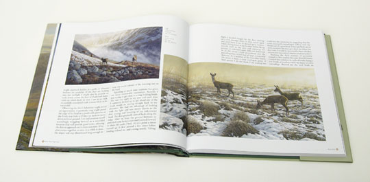 Roe deer - First Snow page