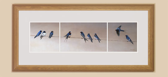 Gathering Swallows Framed Print for Sale