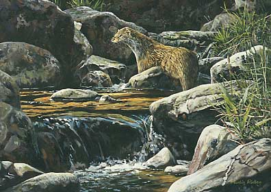 http://www.wildlife-art-paintings.co.uk/picture-pictures/otters/otter-paintings_plantain.jpg