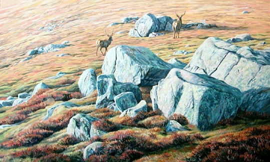 red deer stags - original oil painting by Martin Ridley